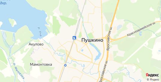 Карта Пушкино с улицами и домами подробная. Показать со спутника номера домов онлайн