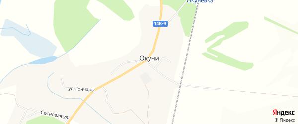Карта села Окуни в Белгородской области с улицами и номерами домов