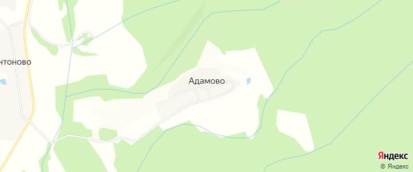 Карта деревни Адамово в Московской области с улицами и номерами домов