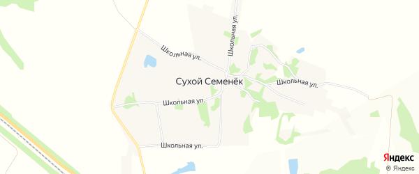 Карта деревни Сухого Семенька в Липецкой области с улицами и номерами домов