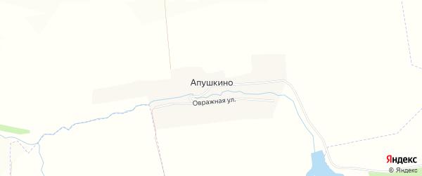 Карта деревни Апушкино в Орловской области с улицами и номерами домов