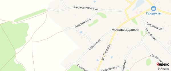 Улица Новоселовка на карте Новокладового села с номерами домов
