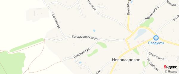 Кандауровская улица на карте Новокладового села с номерами домов