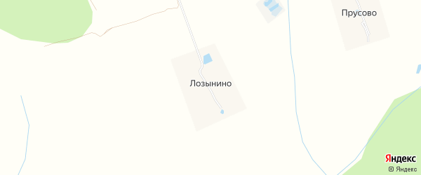 Карта деревни Лозынино в Московской области с улицами и номерами домов