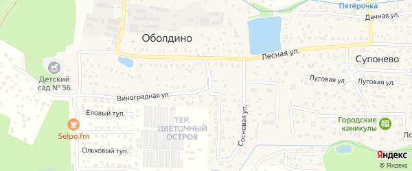 Виноградная улица на карте деревни Оболдино с номерами домов