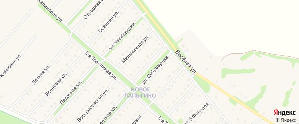 Улица Дубравушка на карте села Лапыгино с номерами домов