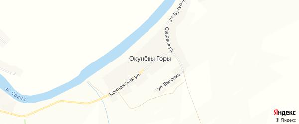 Карта деревни Окунёвы Горы в Орловской области с улицами и номерами домов