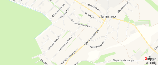 Карта села Лапыгино в Белгородской области с улицами и номерами домов
