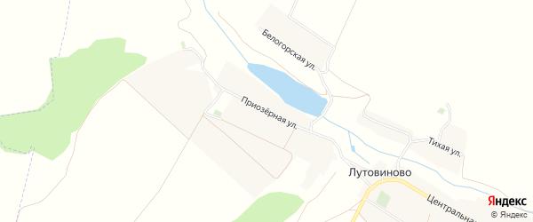 Карта села Лутовиново в Белгородской области с улицами и номерами домов