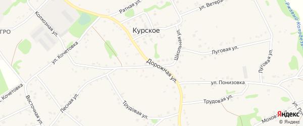Дорожная улица на карте Курского села Белгородской области с номерами домов
