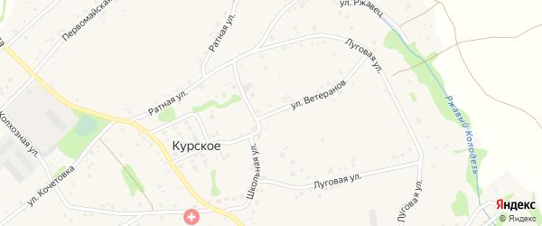 Улица Ветеранов на карте Курского села Белгородской области с номерами домов