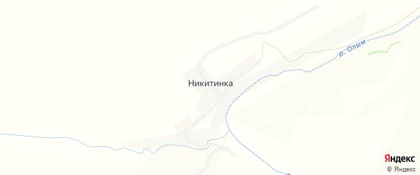 Карта деревни Никитинки в Орловской области с улицами и номерами домов