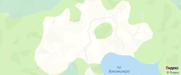 Карта деревни Ваномозера в Вологодской области с улицами и номерами домов