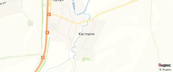 Карта деревни Касторни в Тульской области с улицами и номерами домов