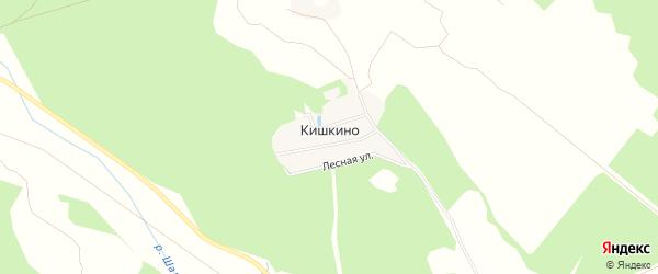 Карта деревни Кишкино в Московской области с улицами и номерами домов