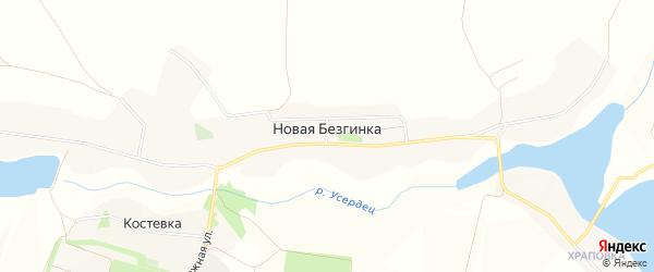 Карта села Новой Безгинки в Белгородской области с улицами и номерами домов
