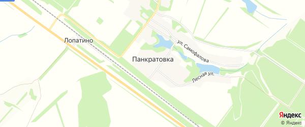 Карта деревни Панкратовки в Липецкой области с улицами и номерами домов