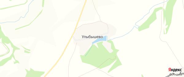 Карта деревни Улыбышево в Тульской области с улицами и номерами домов