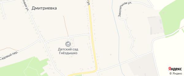Центральная улица на карте села Дмитриевки с номерами домов