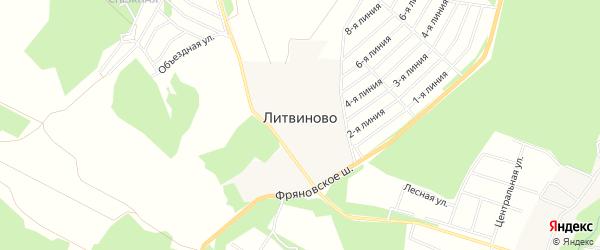 Карта поселка Литвиново в Московской области с улицами и номерами домов