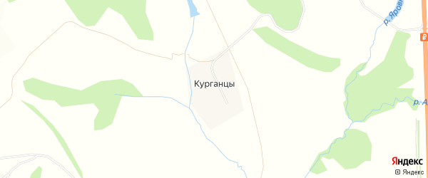 Карта деревни Курганцы в Тульской области с улицами и номерами домов