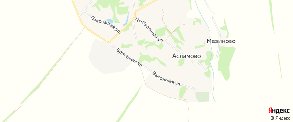 Карта села Асламово в Липецкой области с улицами и номерами домов