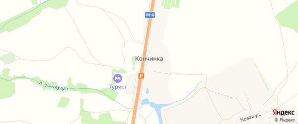 Карта деревни Кончинки в Тульской области с улицами и номерами домов