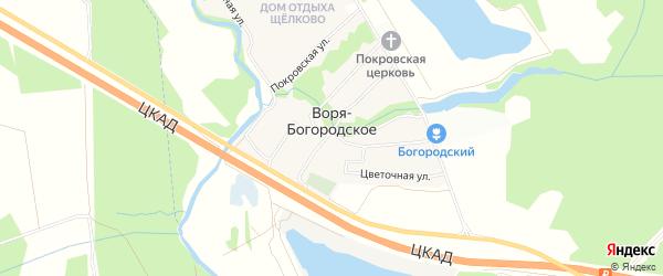 Карта деревни Вори-Богородское в Московской области с улицами и номерами домов
