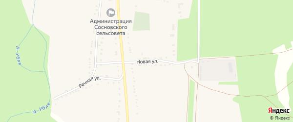 Новая улица на карте села Сосновки Курской области с номерами домов