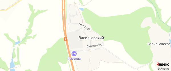 Карта Васильевского поселка в Тульской области с улицами и номерами домов