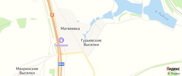 Карта деревни Гурьевские Выселки в Тульской области с улицами и номерами домов
