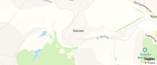 Карта деревни Бяково в Тульской области с улицами и номерами домов