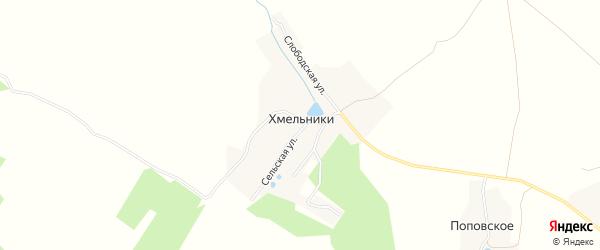Карта деревни Хмельники в Ярославская области с улицами и номерами домов