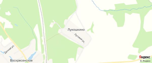 Карта деревни Лукошкино в Тульской области с улицами и номерами домов