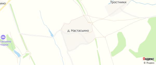 Карта деревни Настасьино в Тульской области с улицами и номерами домов