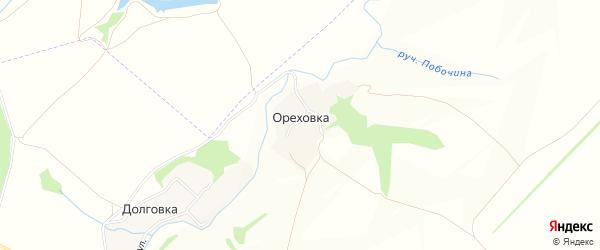 Карта деревни Ореховки в Тульской области с улицами и номерами домов