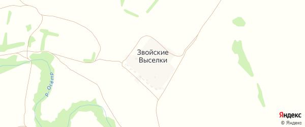 Дачная улица на карте деревни Звойские Выселков Тульской области с номерами домов