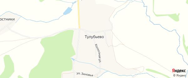 Карта деревни Тулубьево в Тульской области с улицами и номерами домов