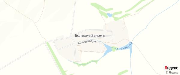 Карта деревни Большие Заломы в Тульской области с улицами и номерами домов