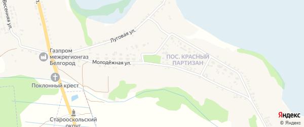 Молодежная улица на карте села Владимировки Белгородской области с номерами домов