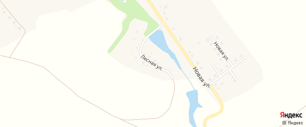 Лесная улица на карте села Поветкино Тульской области с номерами домов