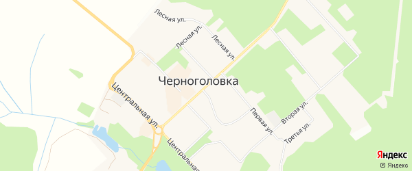 Дачное некоммерческое партнерство НП Солнечный дом на карте Черноголовки с номерами домов