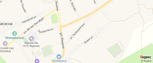 Улица Зеленый Клин на карте села Засосны с номерами домов