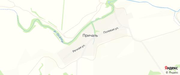 Карта деревни Причали в Тульской области с улицами и номерами домов