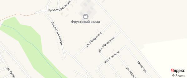 Улица Мичурина на карте поселка Вейделевки с номерами домов