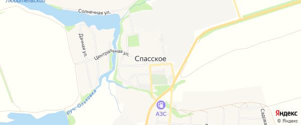 Карта Спасского села в Тульской области с улицами и номерами домов