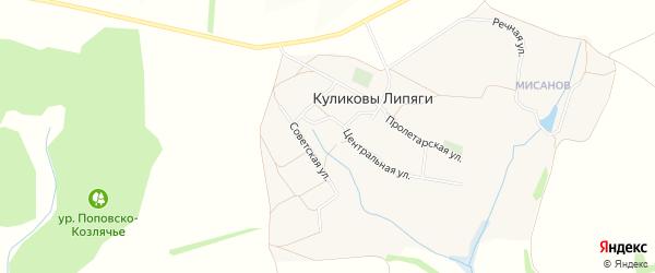 Карта села Куликовы Липяги в Белгородской области с улицами и номерами домов