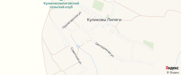 Центральная улица на карте села Куликовы Липяги с номерами домов