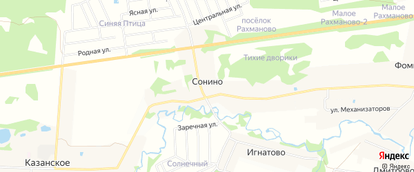 Территория СНТ Дружба на карте деревни Сонино с номерами домов