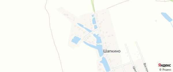 Западная улица на карте деревни Шапкино с номерами домов